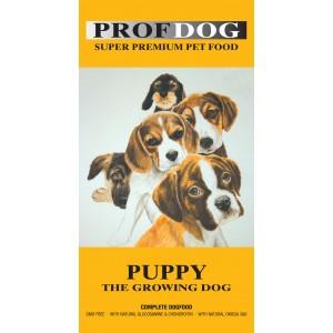 PROF.DOG PUPPY
