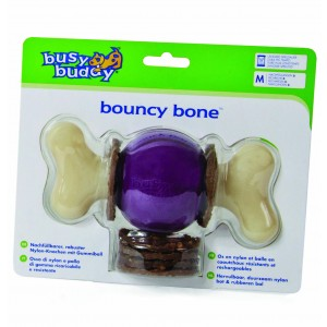 Busy Buddy Bouncy Bone